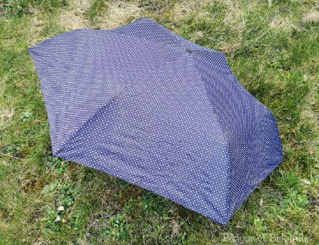Parapluie de voyage